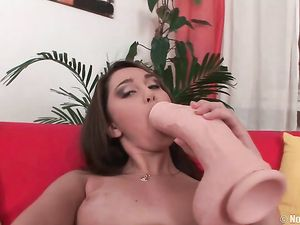 Warmed Up Teen Fucks A Huge Dildo Deep
